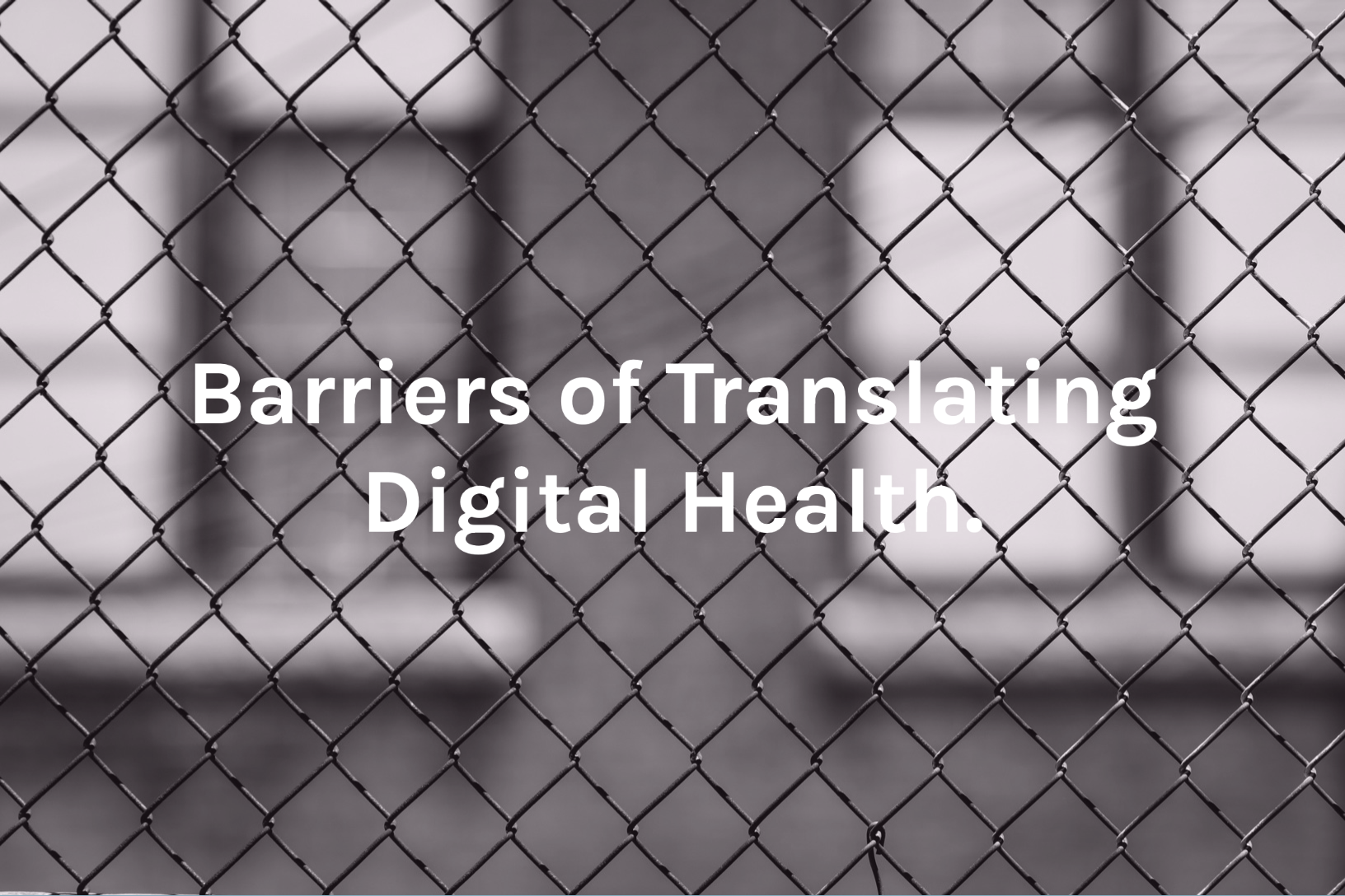 Barriers in Digital Health Beratung